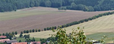Blick auf weite, unterschiedlich bestellte Ackerflächen