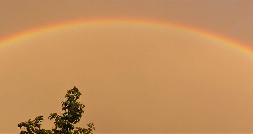 Regenbogen über Malsch
